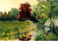 Landschappen